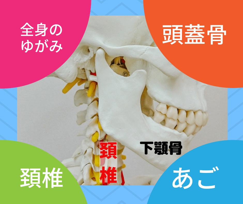 顎と頚椎全身