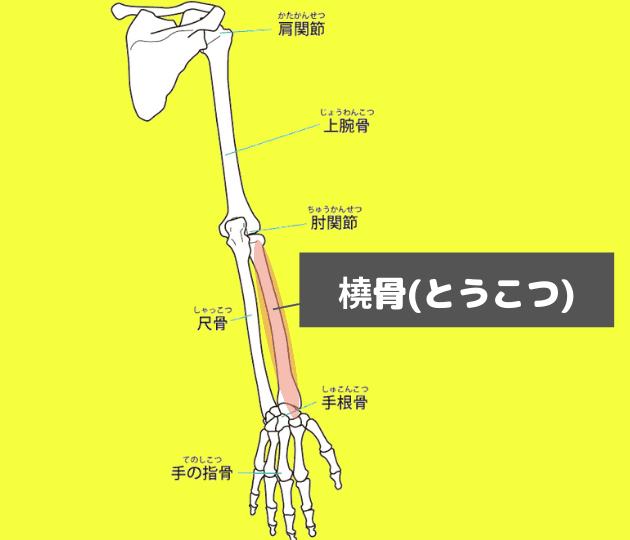 橈骨神経痛